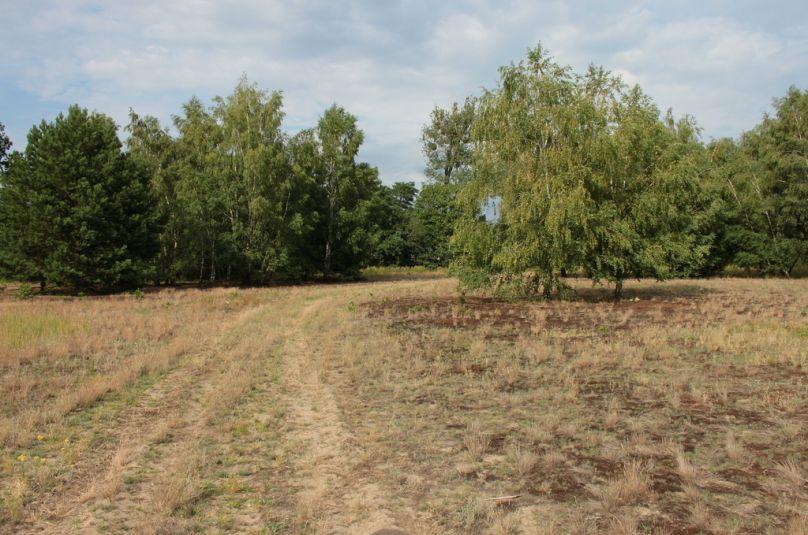 Działka sprzedaż Lubiszyn, Baczyna, 5447 m<sup>2</sup>