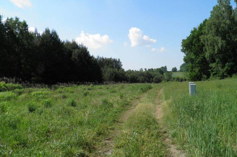 Działka sprzedaż Gorzów, Kłodawa, 1328 m<sup>2</sup>