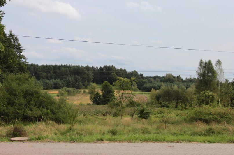 Działka sprzedaż Strzelce Krajeńskie, Przyłęg, 6700 m<sup>2</sup>