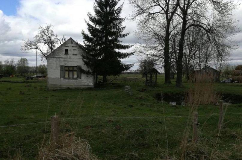 Działka sprzedaż Deszczno, Bolemin, 2025 m<sup>2</sup>