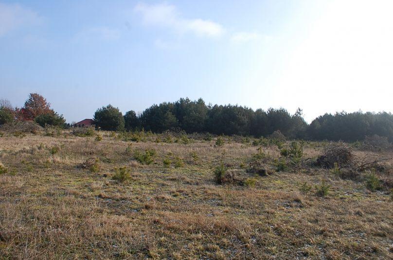 Działka sprzedaż Kłodawa, Santocko, 1222 m<sup>2</sup>